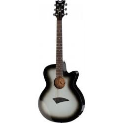 Dean Guitars AXS Performer...