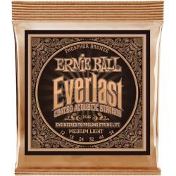 Ernie Ball EverLast 2546