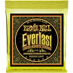 Ernie Ball EverLast 2556
