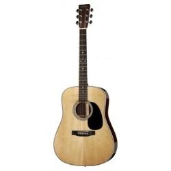 Martin Guitars D Series