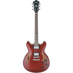 Ibanez AS73T-TCR