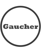 Modéles Gaucher